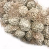 Krans Atafruit White