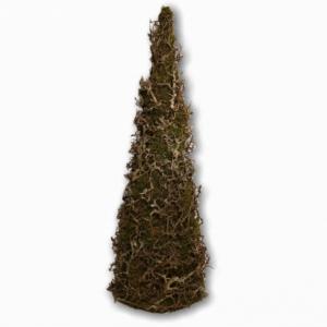 Kegelboom | Kerst | Bonsai | Mos naturel
